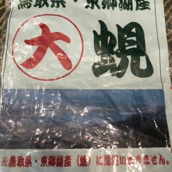 亭主の厳しい目で厳選した 日本各地の旬の鮮魚を提供しています